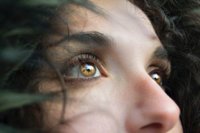 aliments santé des yeux
