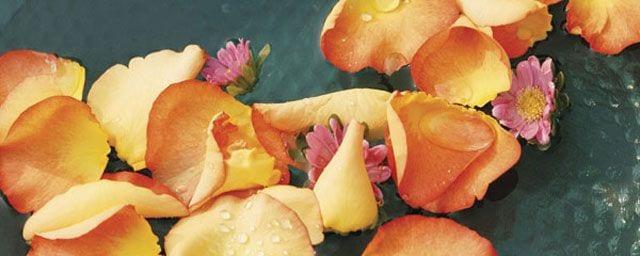 Aromatherapie, die natürliche Gesundheit