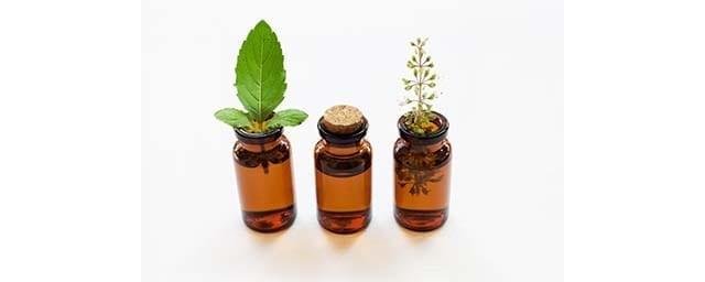 Les plantes médicinales se déclinent en différentes préparations.